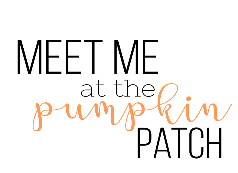 MeetMePumpkinPatch